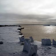 arctic studio
