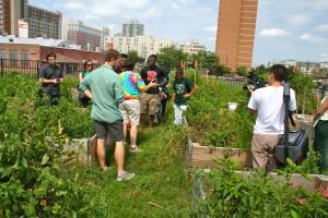 Urban garden student tour