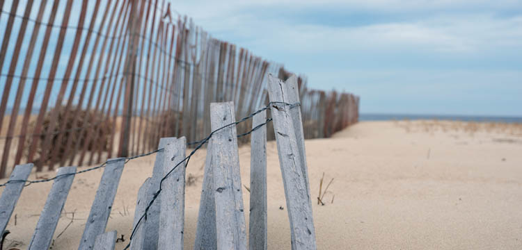 sandy-beach-climate-front
